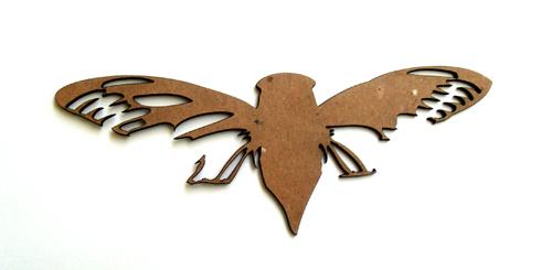 Cicada Bug-0