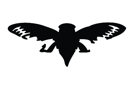 Cicada Stencil-0