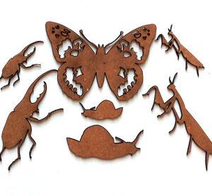 Bug Collection-0