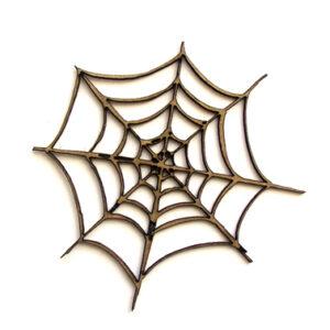 Spider Web-0