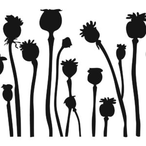 Poppy Pod Stencil-0