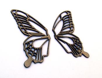 Butterfly Wings-2286