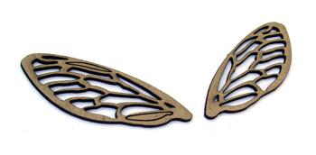 Cicada Wings-2284