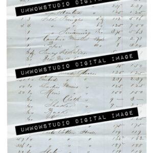 Binswanger and Eger Invoice 1857-0