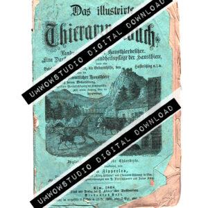1808 German Booklet : Teal-0