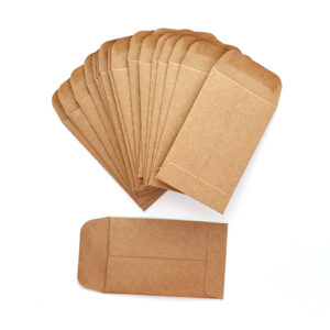 Coin Envelopes : Kraft-0